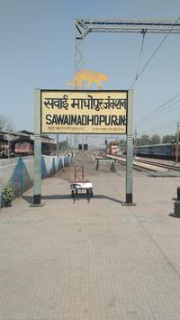 Sawai Madhopur to Mathura: 45 Trains, Shortest Distance: 216
